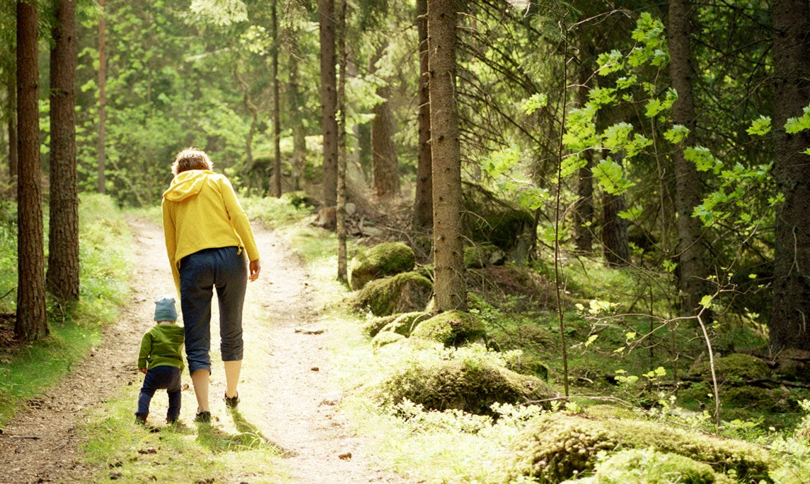 BABYBJÖRN Magazine – A walk in the woods makes a great family outing.