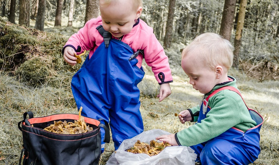 BABYBJÖRN Magazine – Inspiration for what kids can do on a woodland trip from 0-6 years.